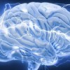 SCIENCE:MOBILE PHONE AFFECTS CEREBRAL BLOOD FLOW IN HUMANS